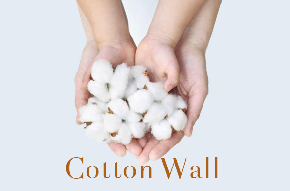 Cotton_top